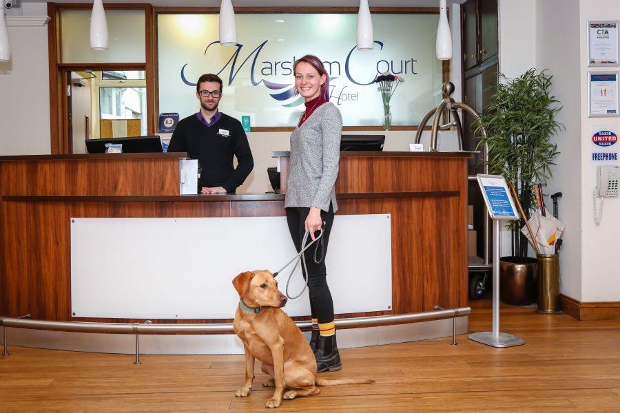 Dog-Friendly, Dog friendly hotel