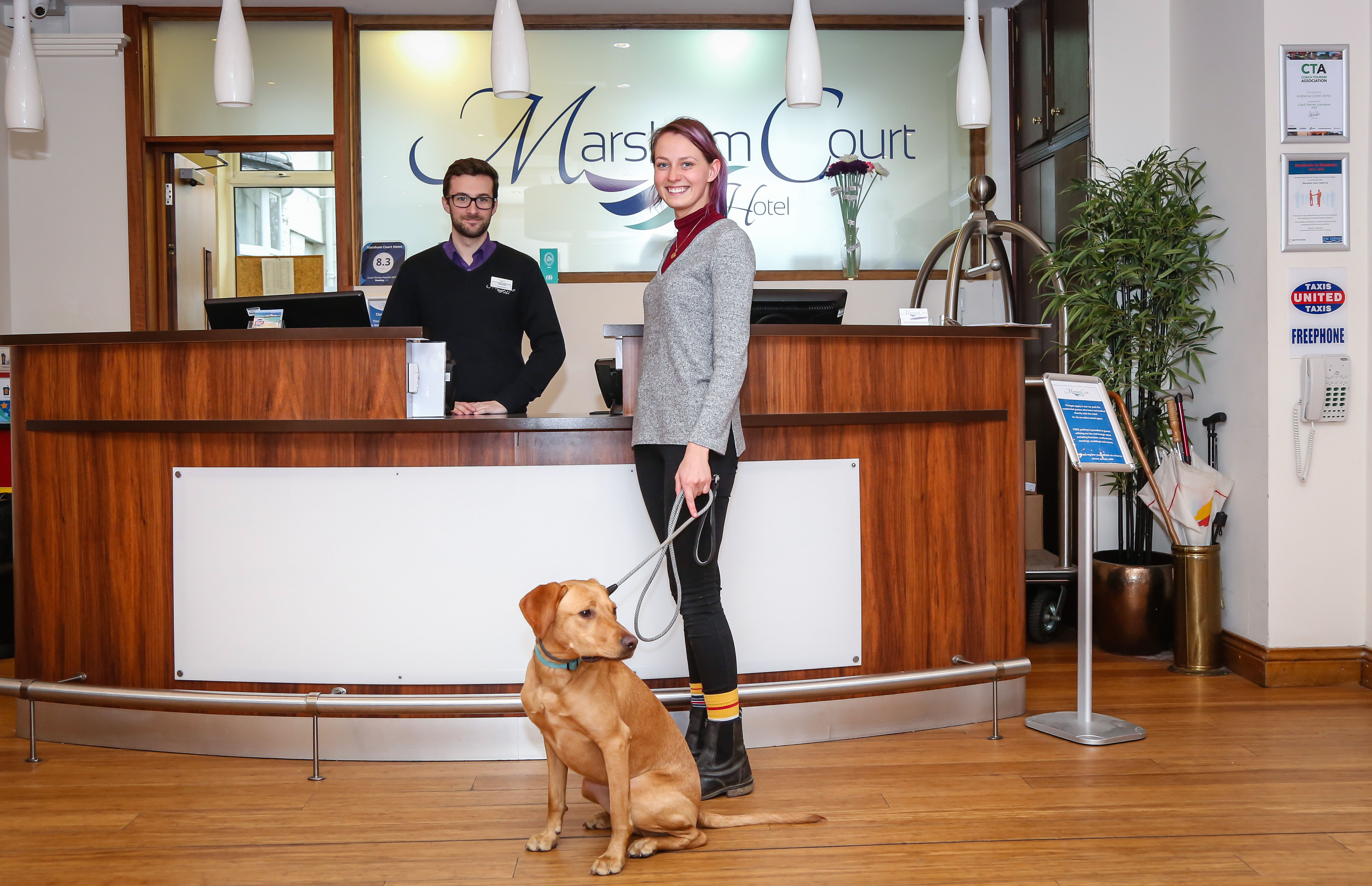 Dog-Friendly, Dog friendly hotel